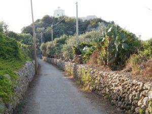 48 - Milazzo - Veduta del Faro