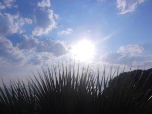 78 - Sole a Milazzo